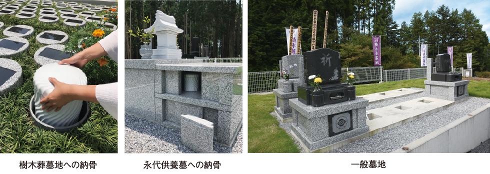 樹木葬墓地への納骨