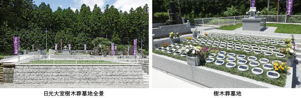 日光大室樹木葬墓地全景